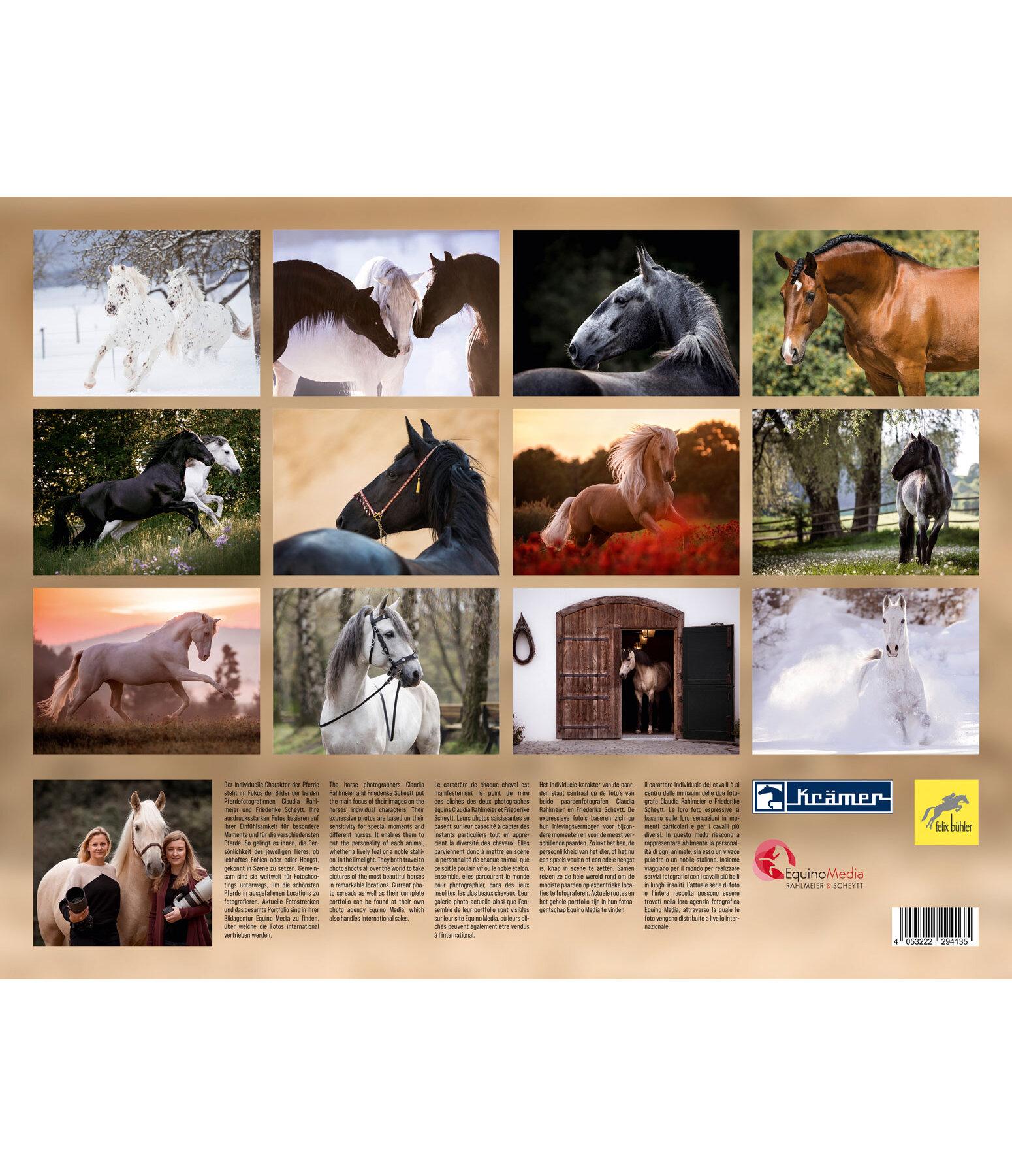barock kalender 2019 kalender kr mer pferdesport. Black Bedroom Furniture Sets. Home Design Ideas